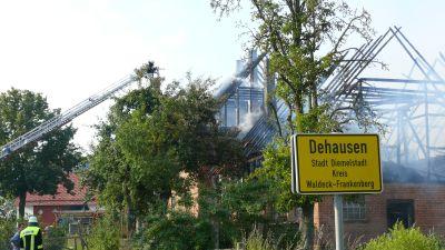 brand dehausen 25 07 2012