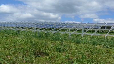 wolfhagen diebstahl solarpark 1 30052014
