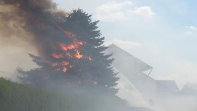 gross zimmern heckenbrand 1 03072014