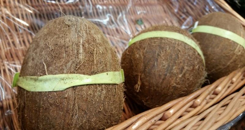Kokosnuss symbolfoto