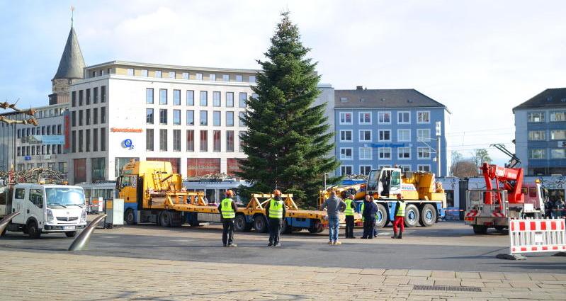 kassel weihnachtsbaum 08112016