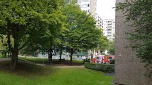 bueckenhof brand 31 07 2017002
