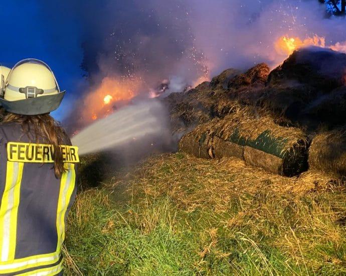 wildeck brand 13092021